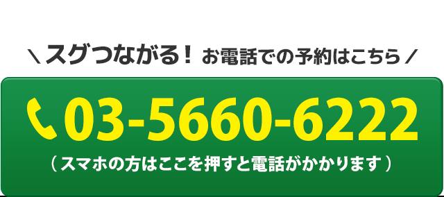 電話番号:03-5660-6222